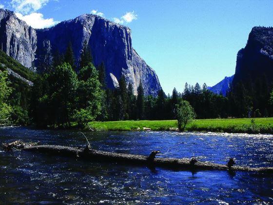 Summertime in Yosemite National Park