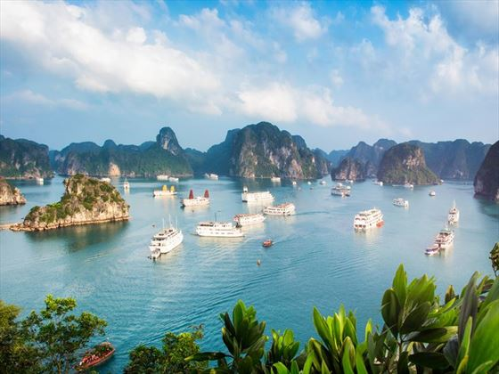 Anchored ships in Halong Bay