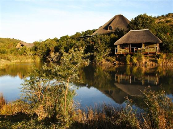 Bayethe tented lodge at Shamwari Private Game Reserve