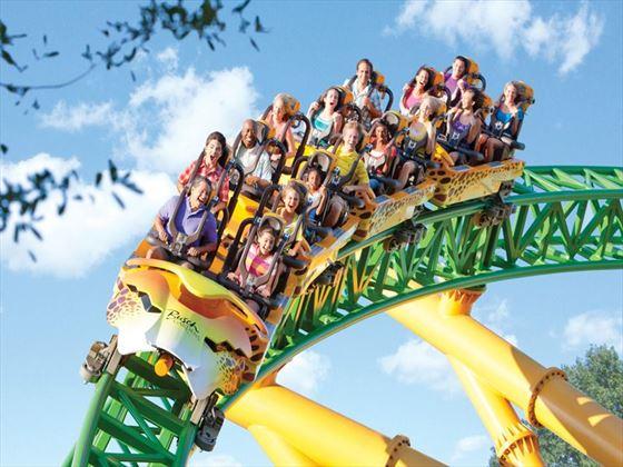 Cheetah Hunt at Busch Gardens® Tampa Bay