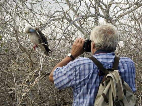 Birdwatching & Photogtaphy in Galapagos