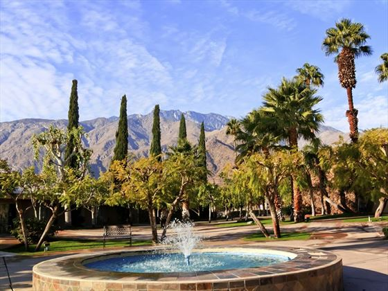 Blue fountain and palms in Palm Springs, California