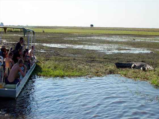 Boat tours at Chobe Safari Lodge