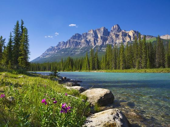 Bow River and Castle Mountain, Banff National Park
