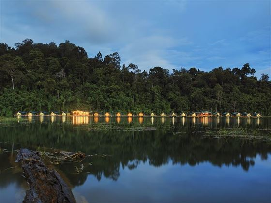 Rainforest Camp at night, Elephant Hills, Khao Sok