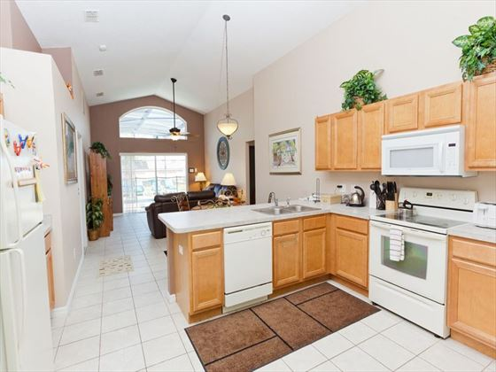 Emerald Island Typical Kitchen of Executive Plus Home