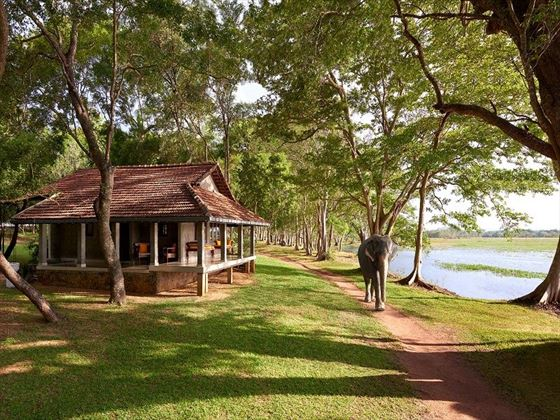Habarana Village by Cinnamon, cottage by the lake