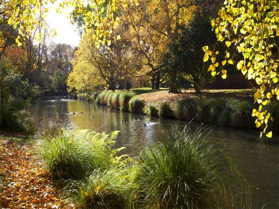Hagley Park in Christchurch