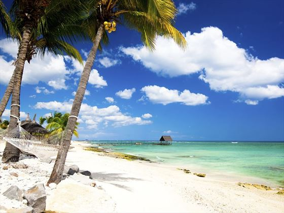 Hammock in the beach in Mauritius