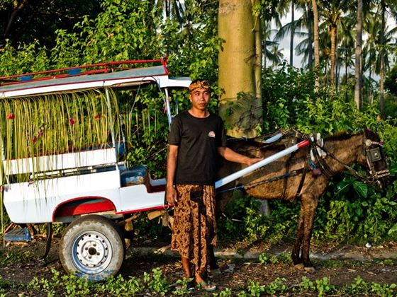 Horse Drawn Bendi Ride, Lombok
