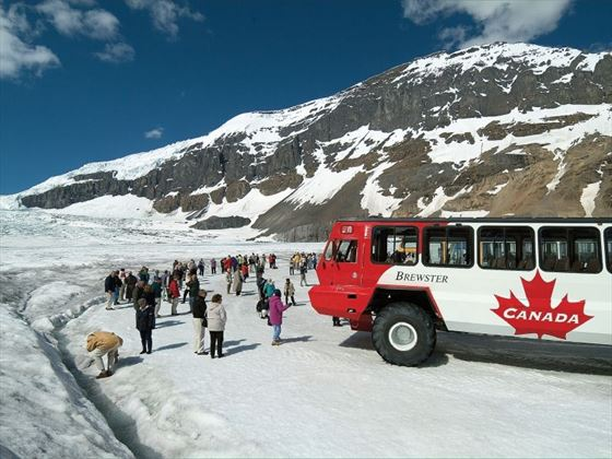 Ice Explorer at Columbia Icefield