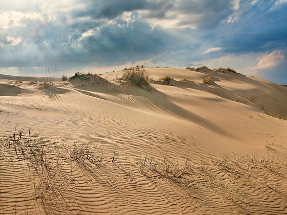 Jockey's Ridge Sand Dunes, Nags Head, North Carolina