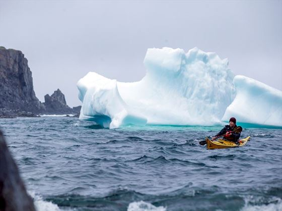 Iceberg off Quirpon Island