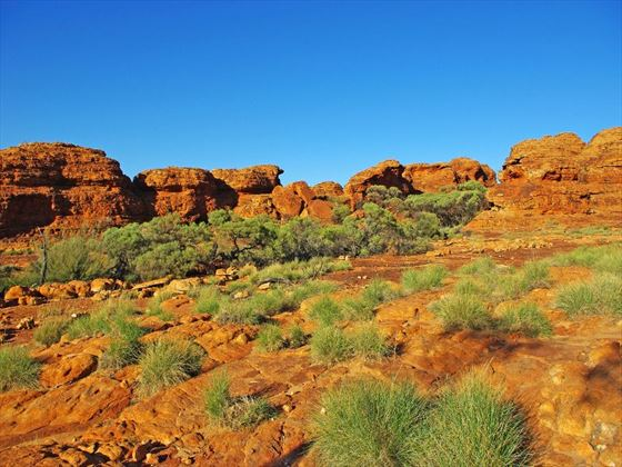 Kings Canyon, Alice Springs