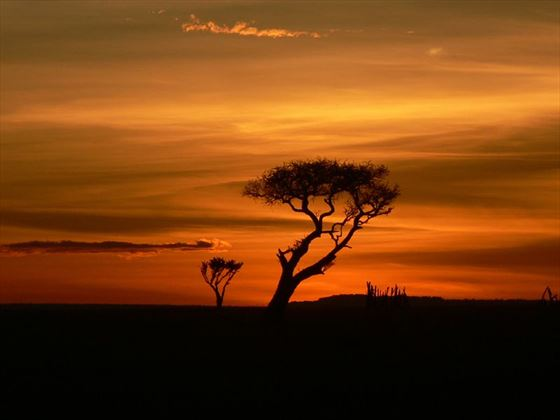 The sun setting on the plains around Mahali Mzuri