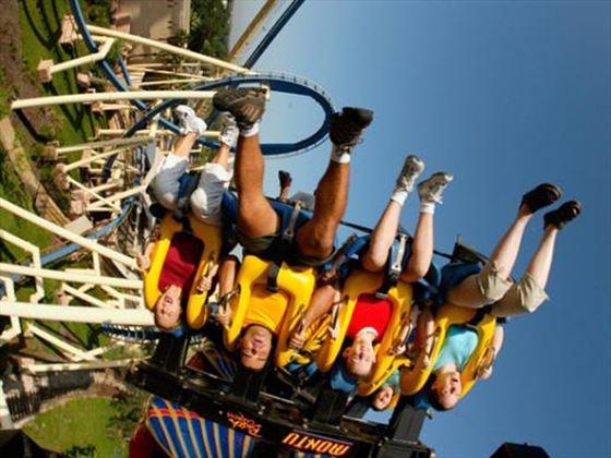Montu at Busch Gardens® Tampa Bay