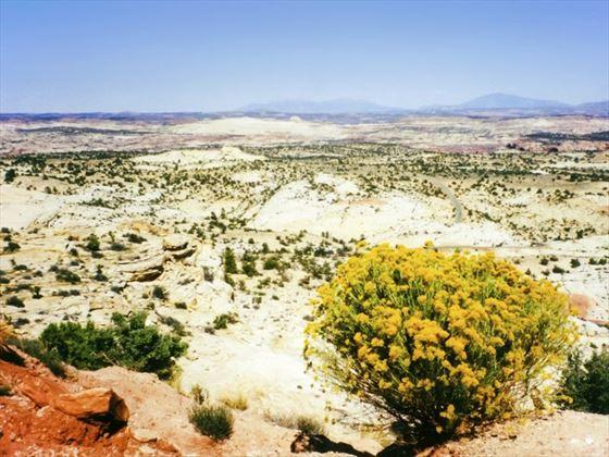 Monument Valley Tribal Park