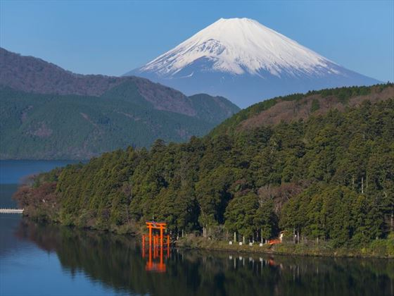 Mt Fuji and Hakone Temple
