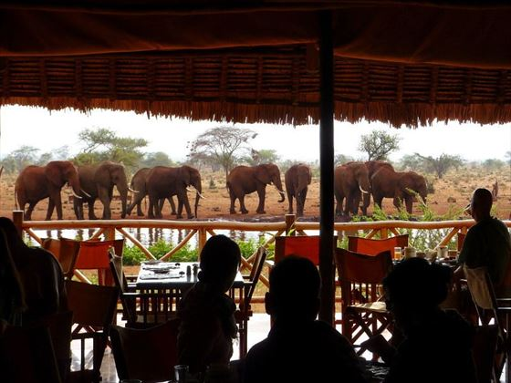 View from the restaurant at Ngutuni Safari Lodge