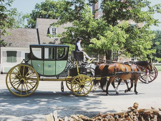 Old horse and carriage, Williamsburg