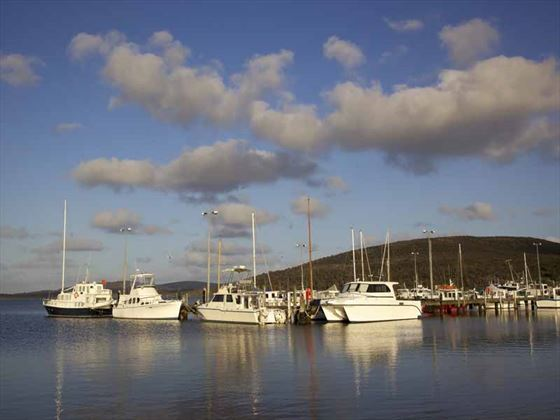Oyster Harbour in Albany