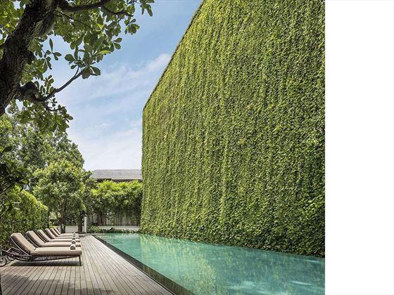 Pool and Living Wall, 137 Pillars House
