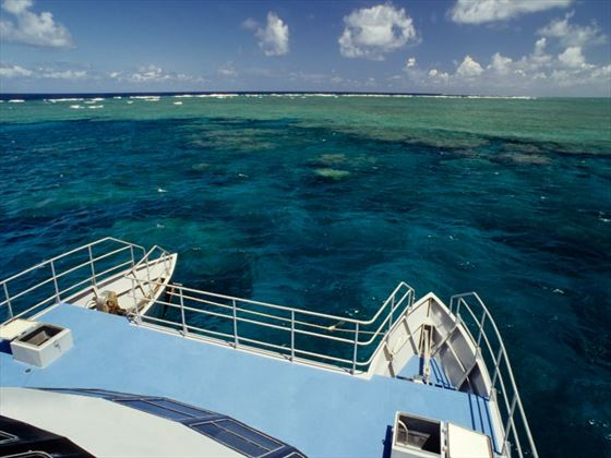 Catamaran trips on the Great Barrier Reef