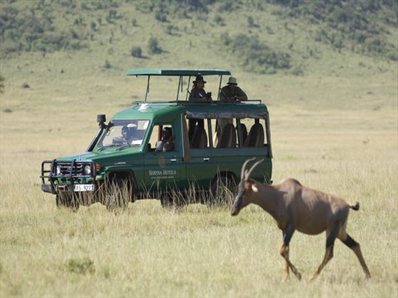Game drive in the Serengeti