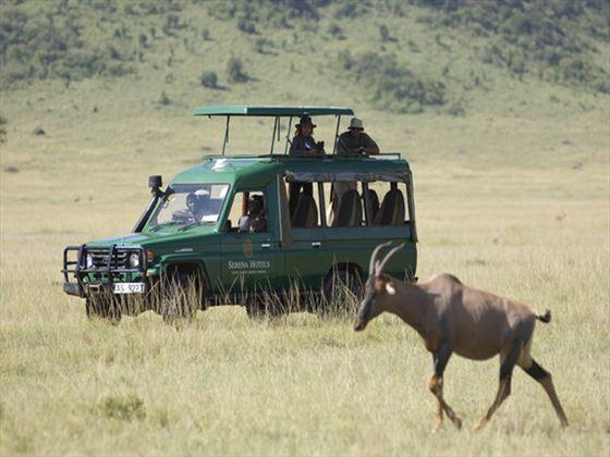 Serengeti Serena Lodge safari
