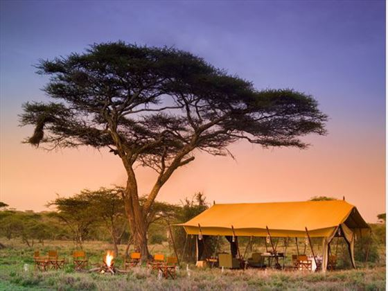 Serengeti Under Canvas tent