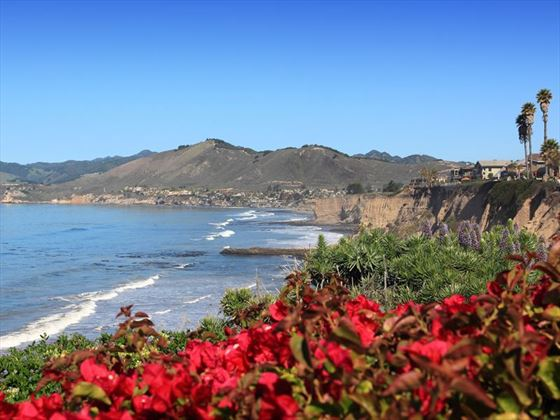 Shell Beach, San Luis Obispo County