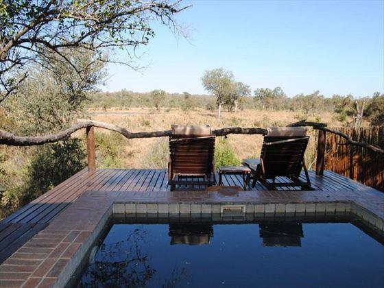 Simbambili Game Lodge plunge pool