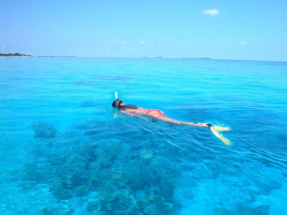 Explore the marine life with memorable snorkelling excursions in the Maldives on your boutique getaway