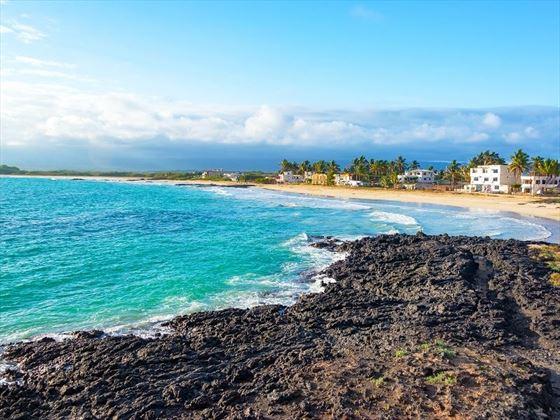 Stunning Beach Scenery in the Galapagos
