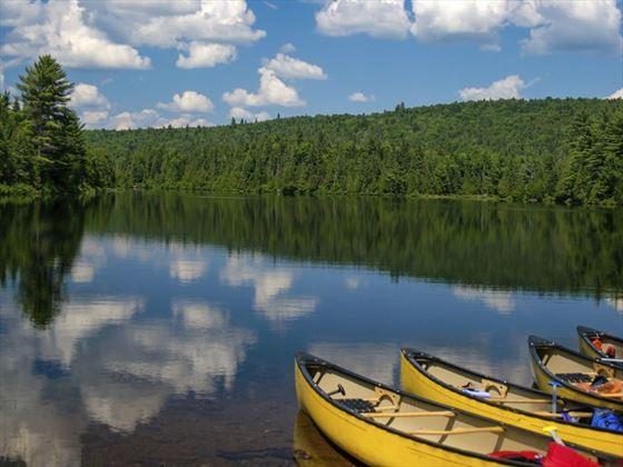 Summer in Algonquin Provincial Park