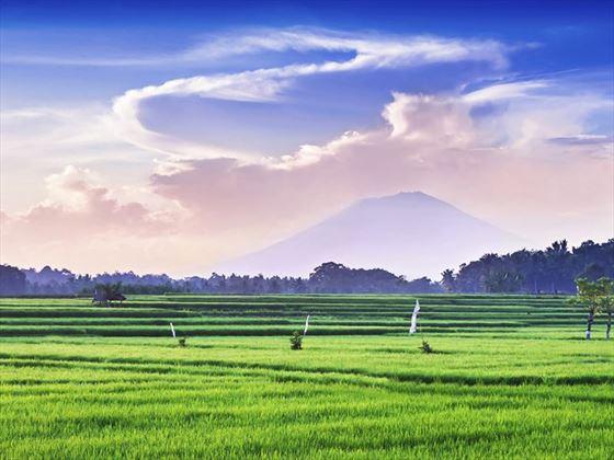 Sunset Bali Landscape
