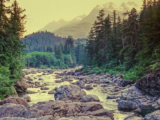 Swift River, White Mountains