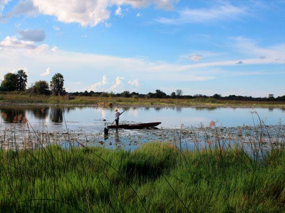 Thamalakane River, Botswana