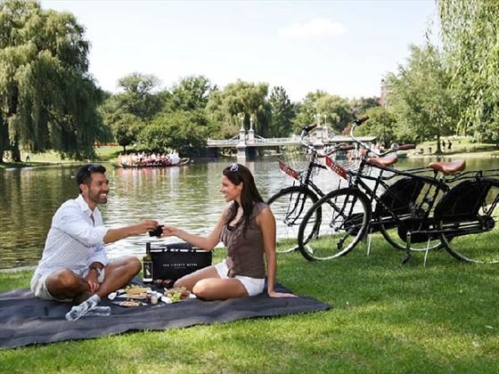 Find a pleasant spot for a picnic