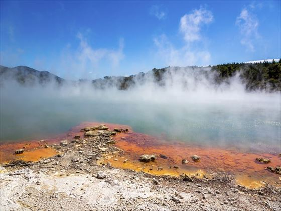 Thermal water by Rotorua