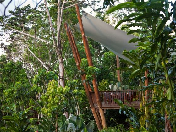 Treehouse balcony at Rose Gums Wilderness Retreat