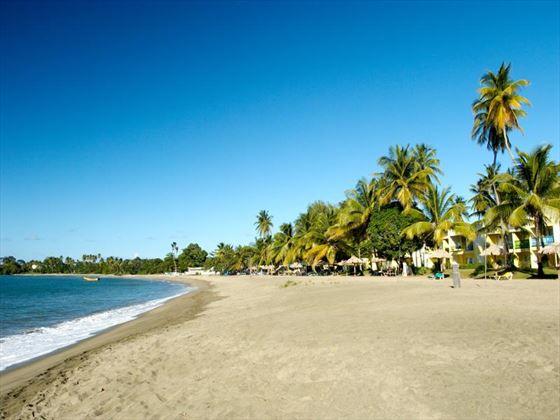 Turtle Bay Tobago beachfront area
