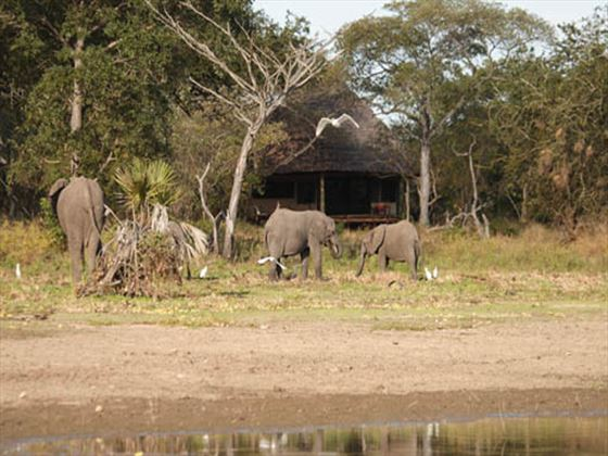 View from the tents at Selous Safari Camp