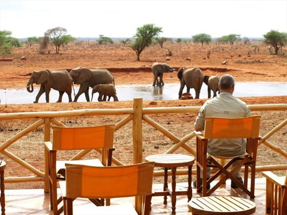 Viewing deck by the watering hole at Ngutuni Safari Lodge