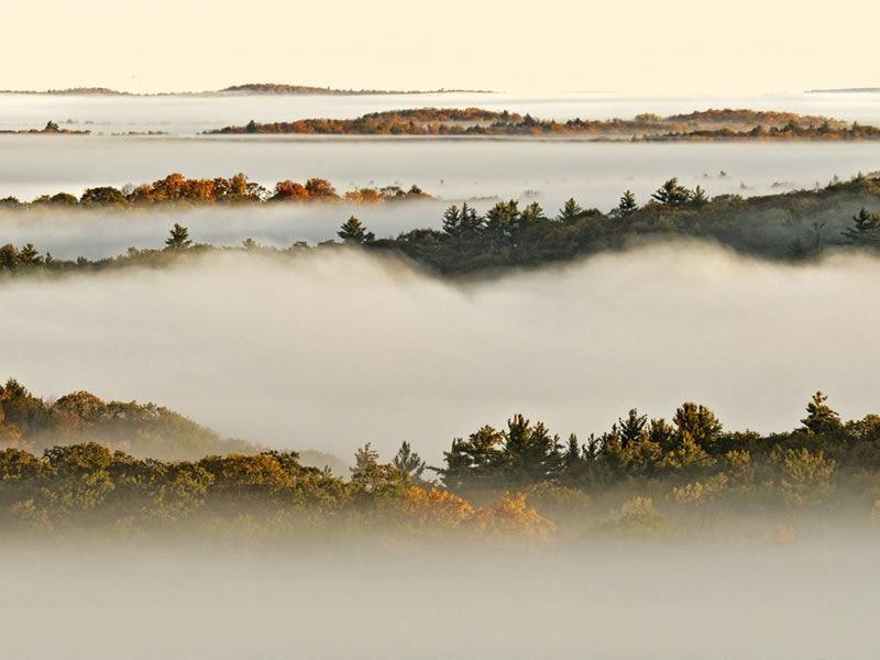 algonquin provincial park in fog ontario