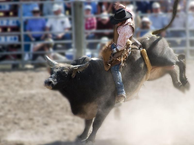 augusta montana rodeo