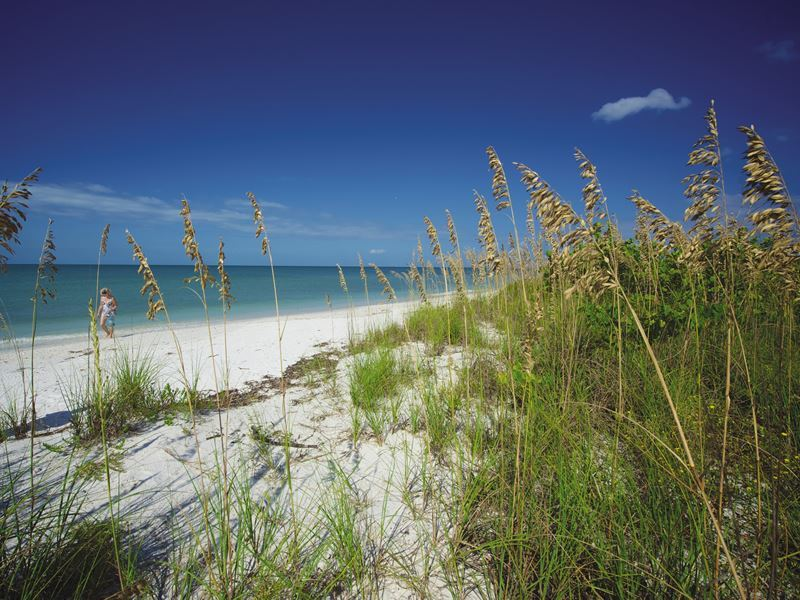 beach lovers key fort myers