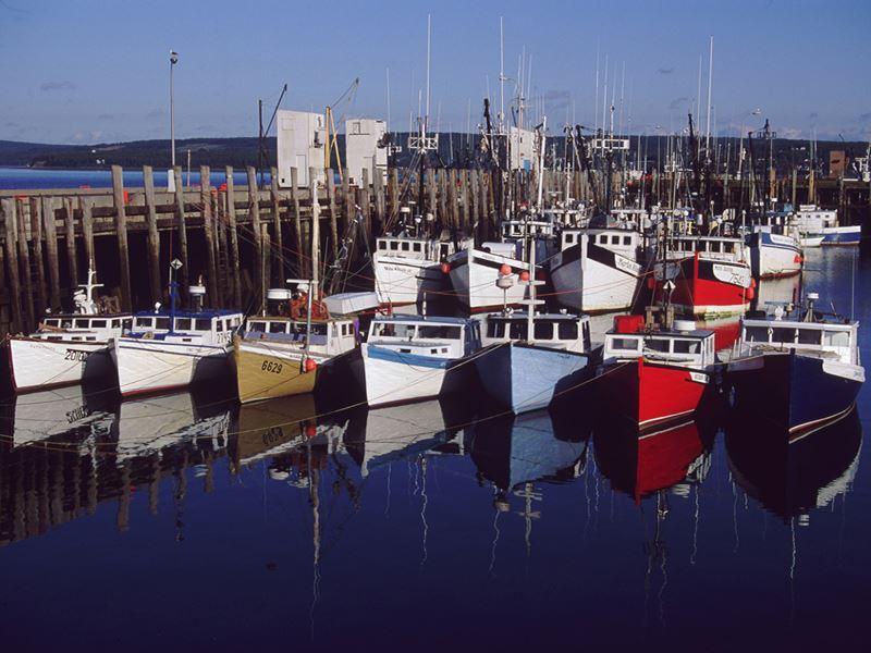 boat fleet digby nova scotia