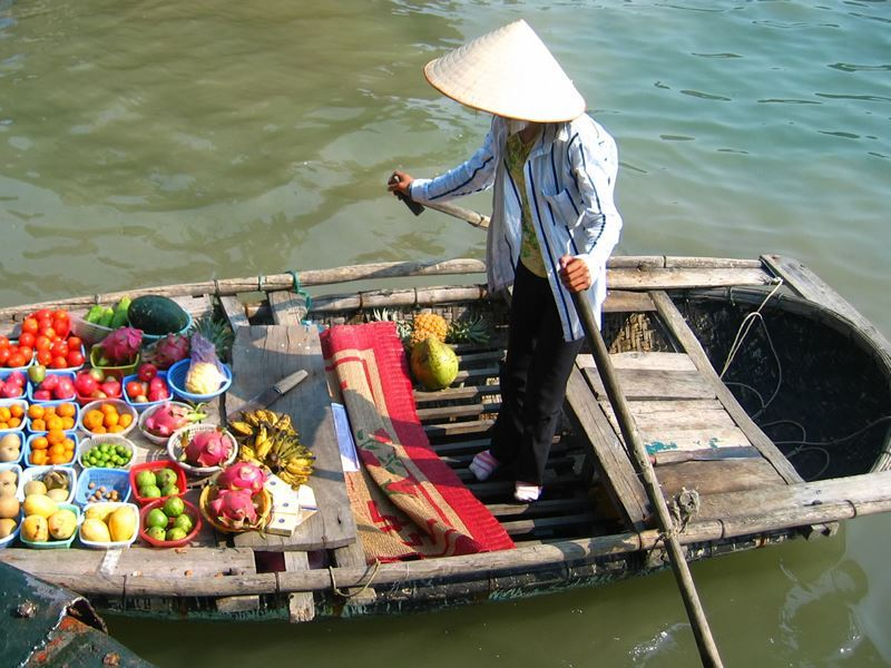 boat fresh fruit halong bay