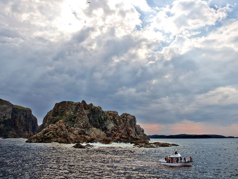 boat tour twillingate